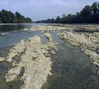 Etiage de la Garonne à St-Denis (47)